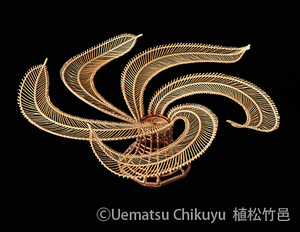 uematsu_s.jpg